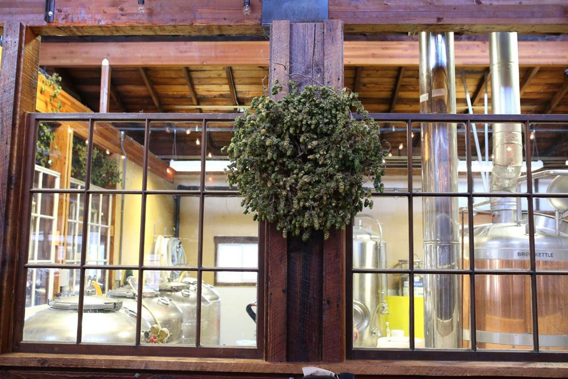 Grain Station Brew Works in McMinnville, Oregon
