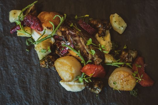 Seared sea scallops at Red Hills Kitchen, a new restaurant at the Atticus Hotel in McMinnville from Chef Jody Kropf. (Photo: Zachary Goff Photography)